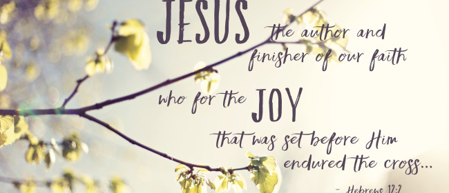12 / 52 – For the joy…